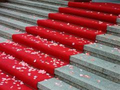 Rulla ut röda mattan med Expo Trend